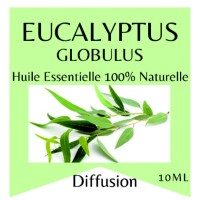 Essential oil 100% Pure and Natural EUCALYPTUS