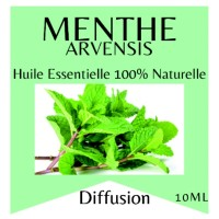 Essential oil 100% Pure and Natural MINT
