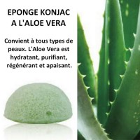 Eponge Konjac à l'Aloe Vera