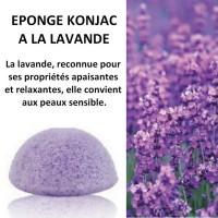 Konjac Sponge with Lavender